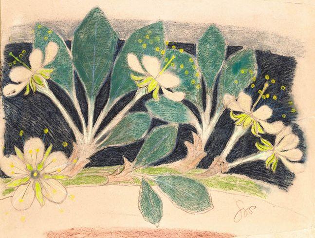 Kwiaty wiśni Stanisław Wyspiański
